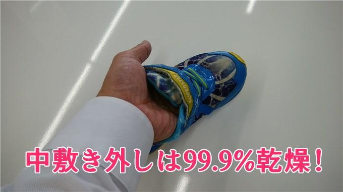 中敷きなしの緑靴は99%乾燥