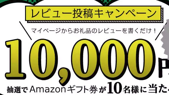 ふるさと納税 お礼品レビュー投稿キャンペーン