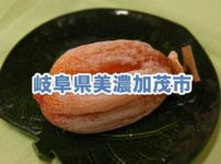 岐阜県美濃加茂市のふるさと納税人気返礼品TOP10を聞いてみた!