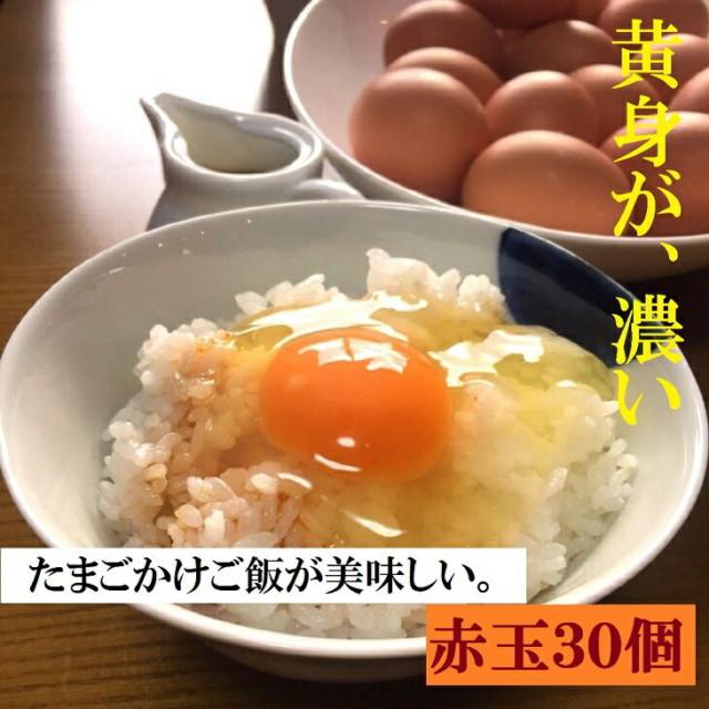 AG03_江原ファーム 体に優しい地養卵(30個)