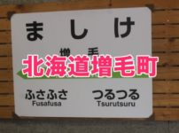 北海道増毛町のふるさと納税人気返礼品TOP7を聞いてみた!