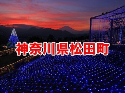 神奈川県松田町ふるさと納税おすすめ返礼品5つ