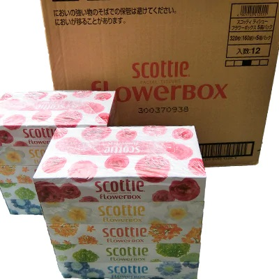 ボックスティッシュ5箱セット×12