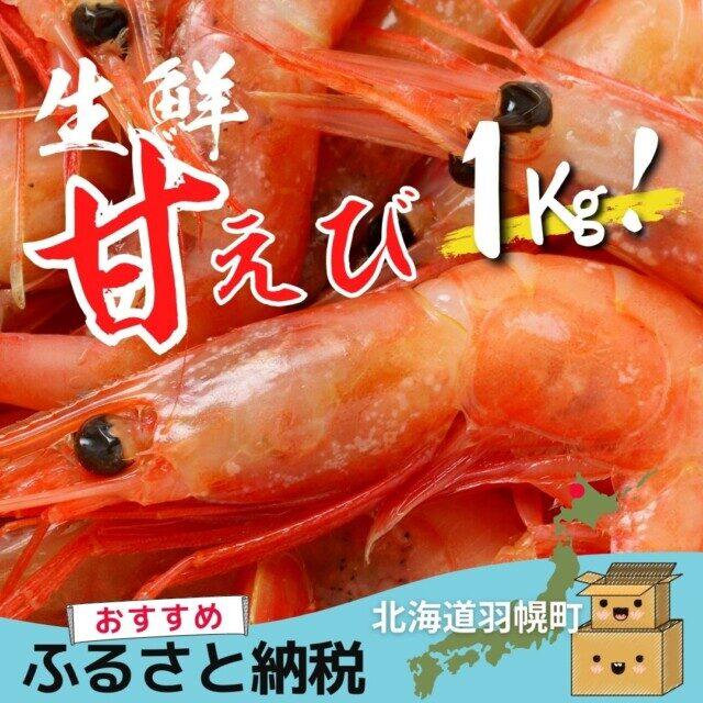 北海道苫前郡羽幌町のふるさと納税人気返礼品 生鮮甘えび