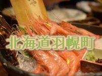 北海道苫前郡羽幌町のふるさと納税人気返礼品TOP10を聞いてみた!