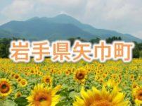 岩手県矢巾町のふるさと納税人気返礼品TOP10を聞いてみた!