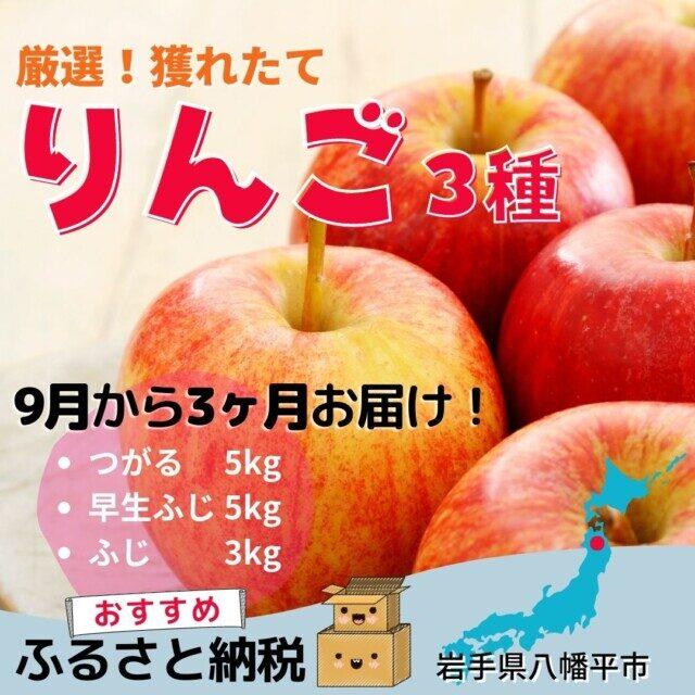 岩手県八幡平市のふるさと納税人気返礼品TOP5位 厳選りんご3種セット