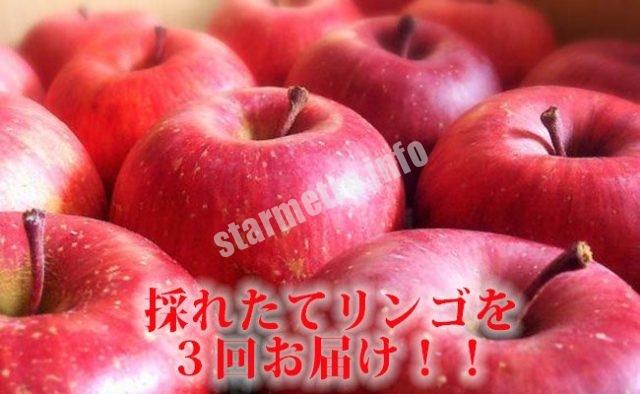 5位 厳選りんご3種セット 寄付額:2万円