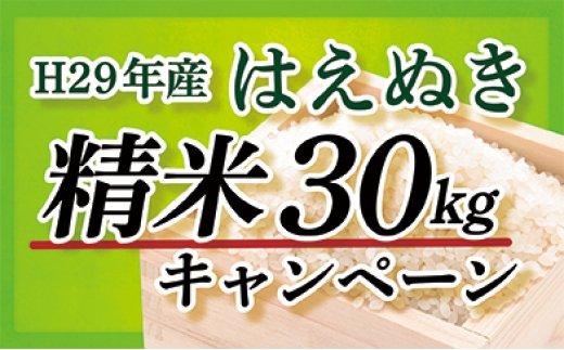 【精米】山形県最上町産はえぬき30kg