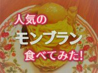 ふるさと納税レビュー!神奈川県海老名市の「モンブラン」を食べてみた!