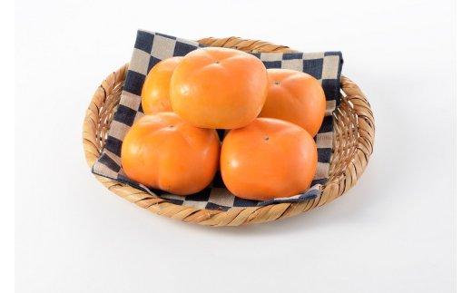 【平成31年先行予約】とろける甘みの新道柿 5kg