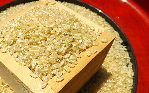 《H30年産米》有機肥料を使って栽培した『特選さがびより』玄米 10kg(5㎏×2袋)(みやき町産)