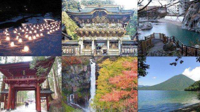 栃木県日光市のふるさと納税人気返礼品TOP10を聞いてみた!