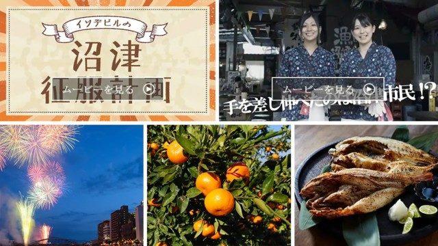 静岡県沼津市のふるさと納税人気返礼品TOP10を聞いてみた!