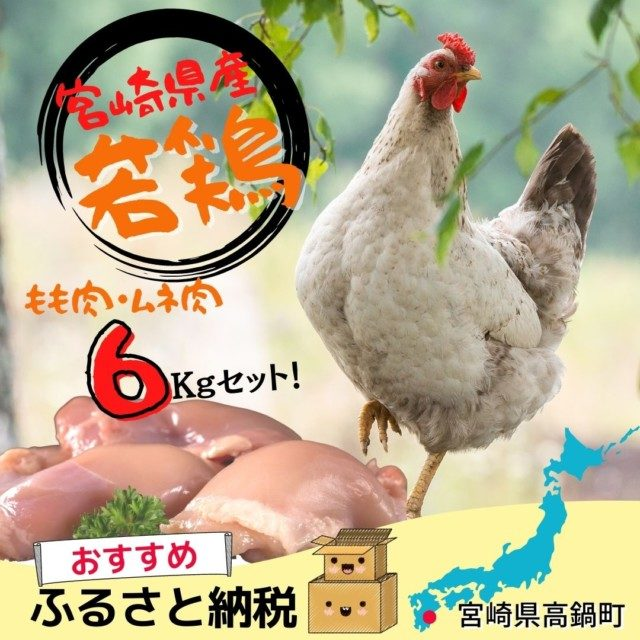 宮崎県高鍋町のふるさと納税人気返礼品4位 <宮崎県産若鶏6kgセット>