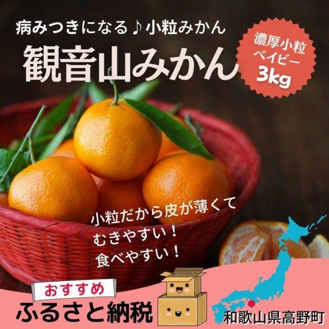 和歌山県高野町のふるさと納税人気返礼品5位 和歌山 観音山みかん濃厚小粒ベイビー3kg