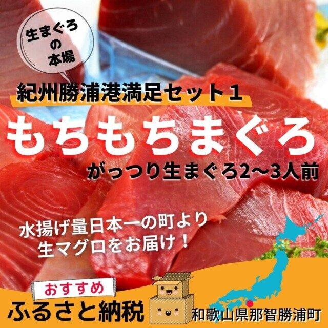 和歌山県那智勝浦町のふるさと納税返礼品TOP9.紀州勝浦港満足セット1「もちもちまぐろ」がっつり生まぐろ2~3人前