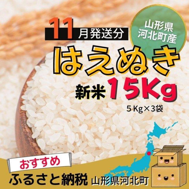 山形県河北町のふるさと納税3位 はえぬき15kg【11月発送分】
