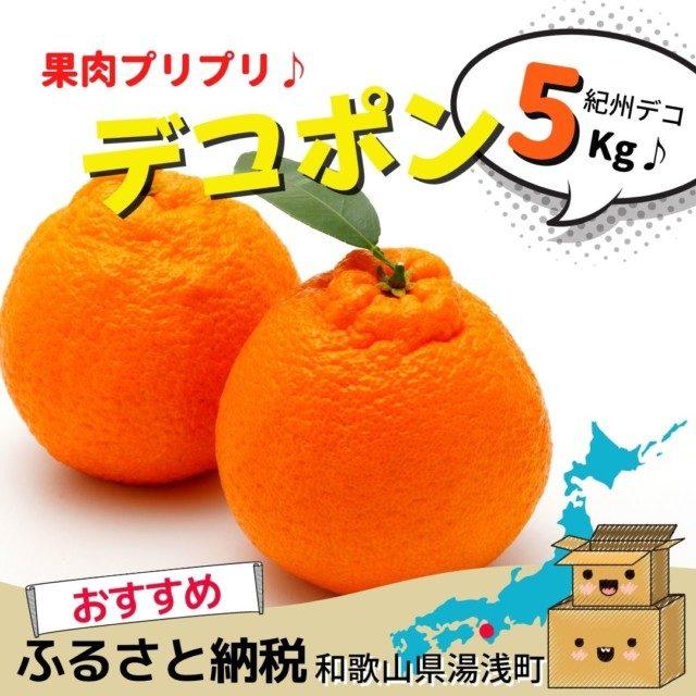 9位 果肉プリプリ♪紀州デコ 約5kg
