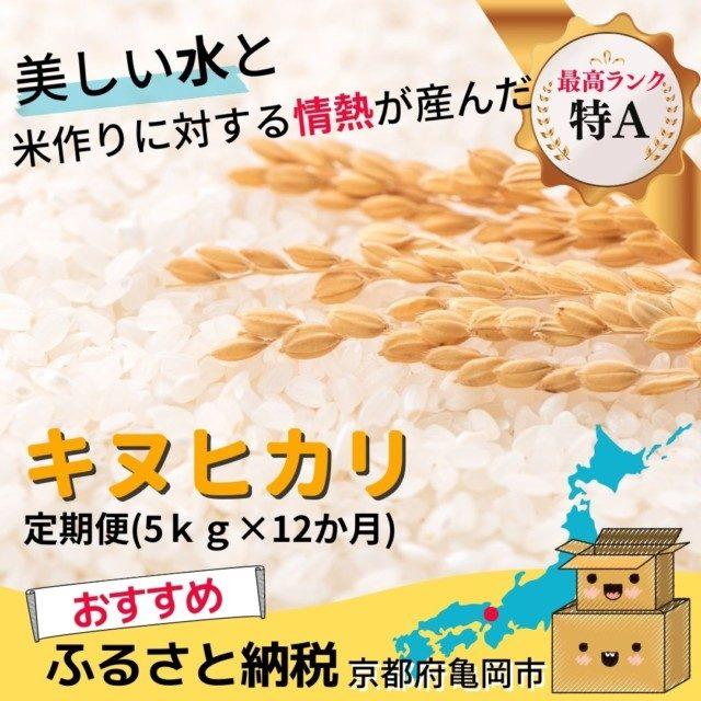 京都府亀岡市のふるさと納税人気おすすめ返礼品2位キヌヒカリ5キロ×12ヶ月