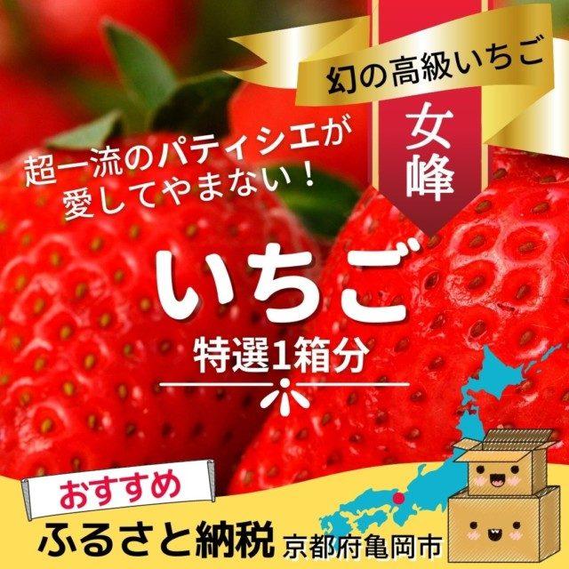 京都府亀岡市のふるさと納税人気おすすめ返礼品9位いちご特選1箱