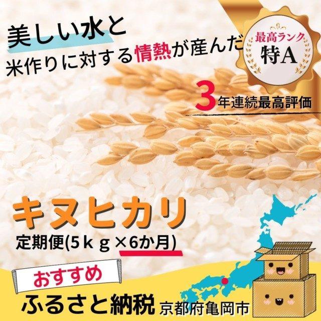 京都府亀岡市のふるさと納税人気おすすめ返礼品10位キヌヒカリ定期便6回