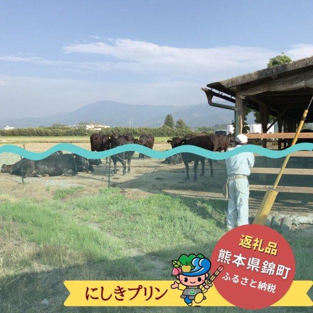 全国的にも珍しいツクシイバラが自生している!球磨川沿いで栄える錦町